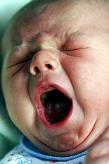child_yawn_sean_drelinger
